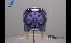 チューブポンプ WPX1 DCモータ Mタイプ
