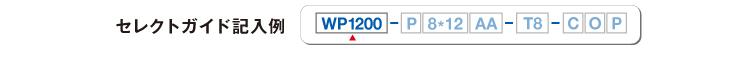 wp1200_guide01_img00.jpg